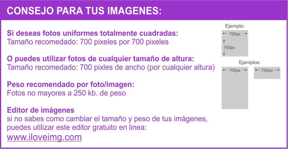 guia_ayuda_web_06C-tips